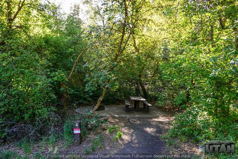 Balsam Campground - 004