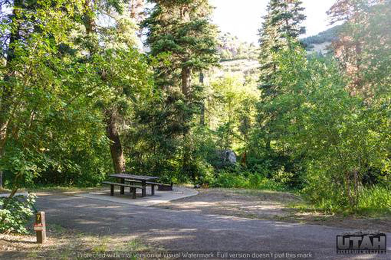 Balsam Campground - 007