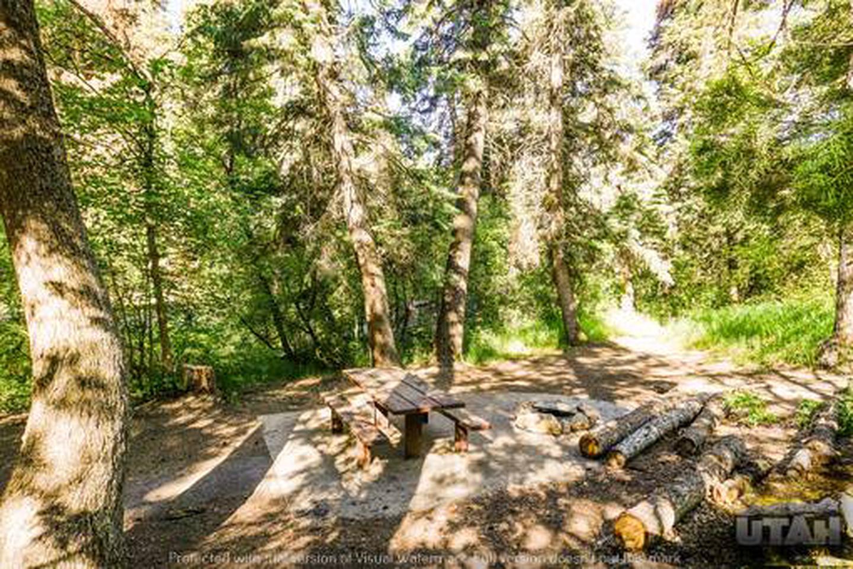 Balsam Campground - 008