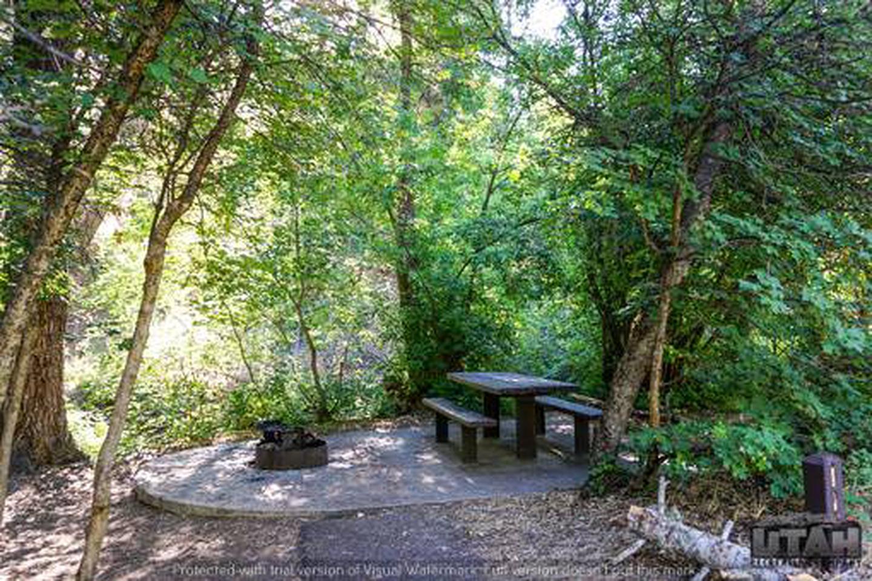 Balsam Campground - 011