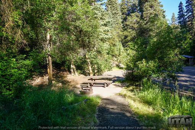 Balsam Campground - 012