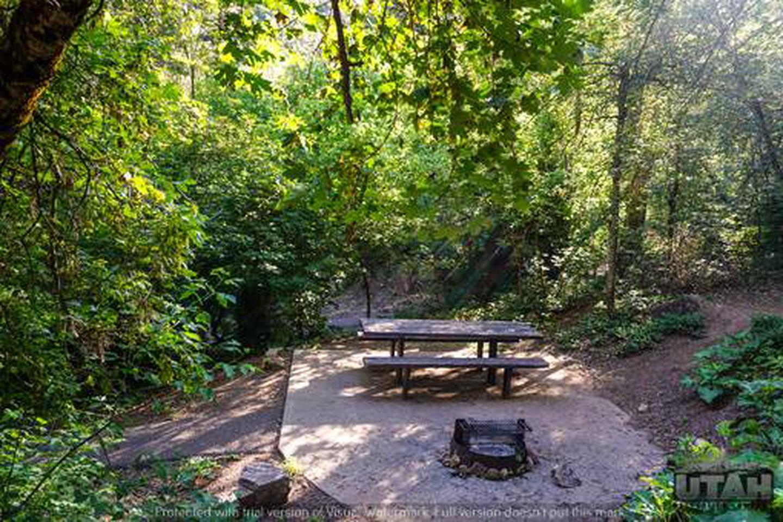 Balsam Campground - 013