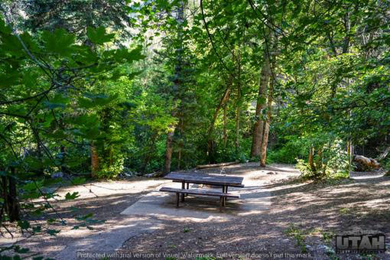 Balsam Campground - 014