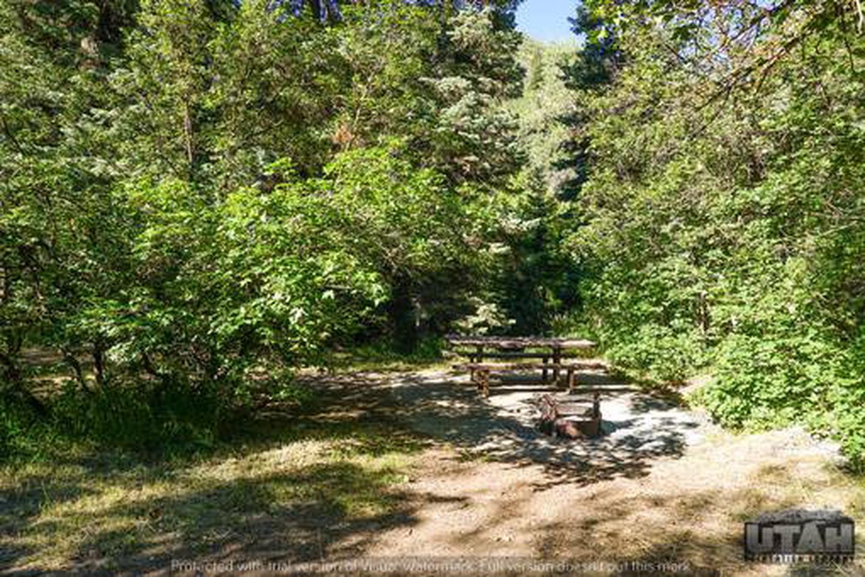 Balsam Campground - 017