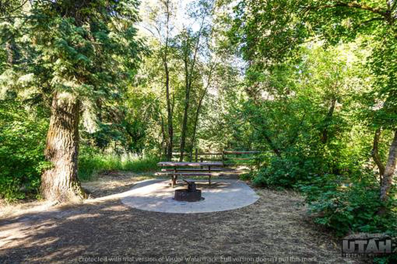 Balsam Campground - 021