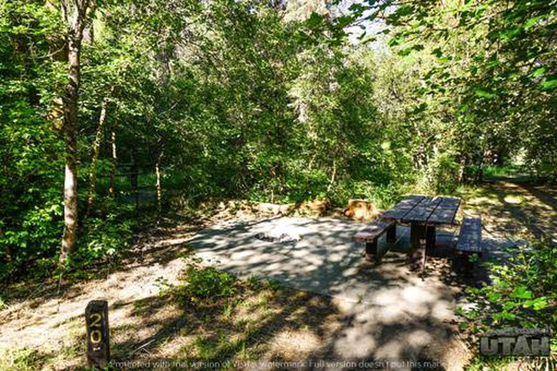 Balsam Campground - 020
