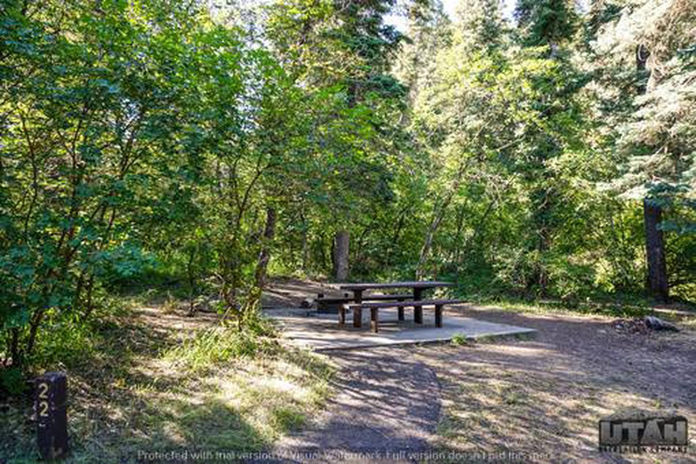 Balsam Campground - 022