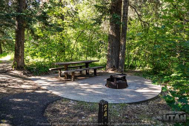 Balsam Campground - 024