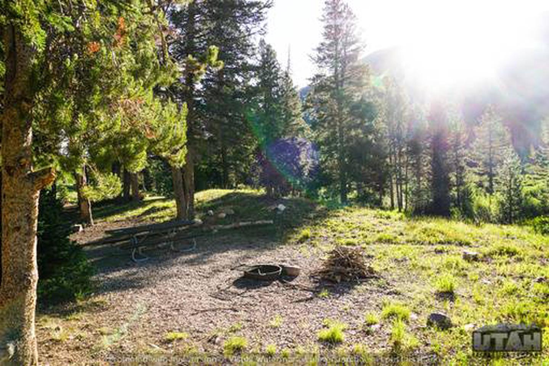 Sulphur Campground - 007