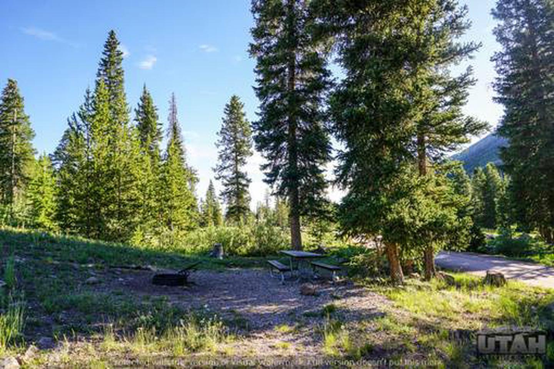 Sulphur Campground - 008