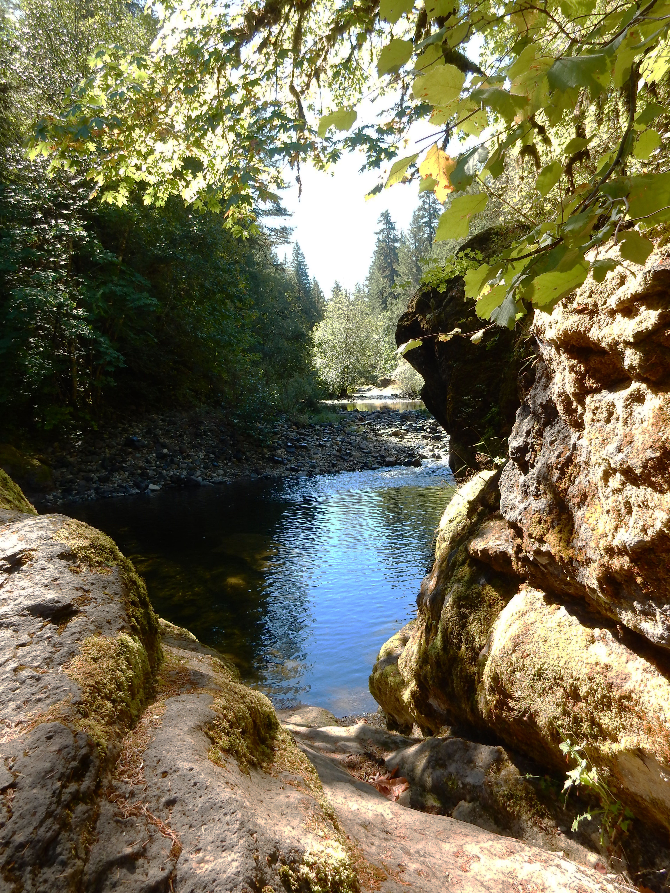 View of Sharps Creek
