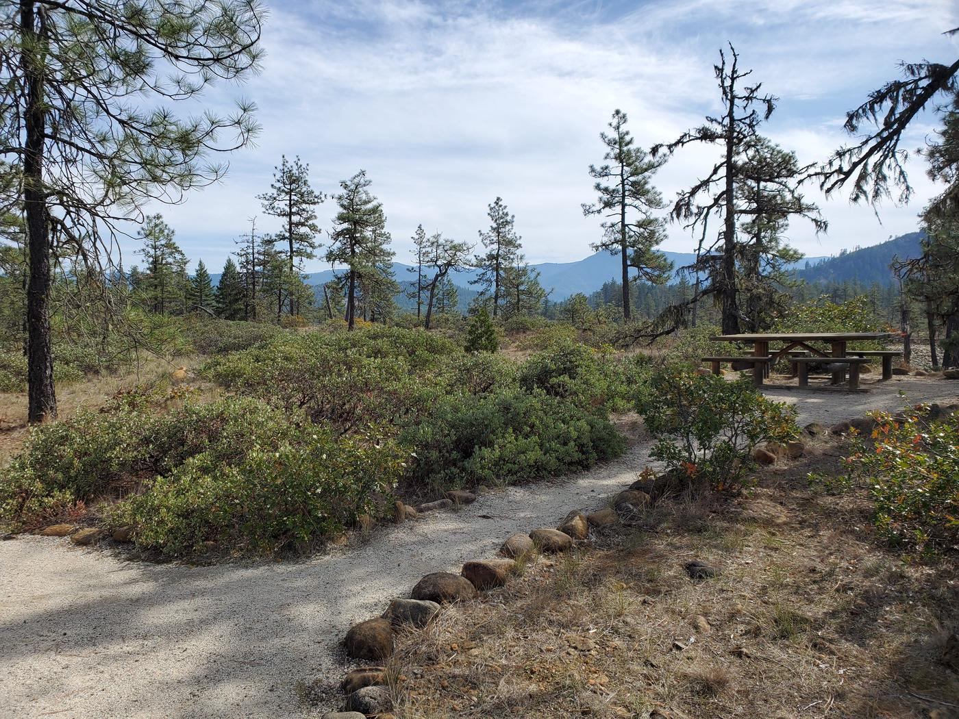 Picnic table along the Rough and Ready Flat trail.