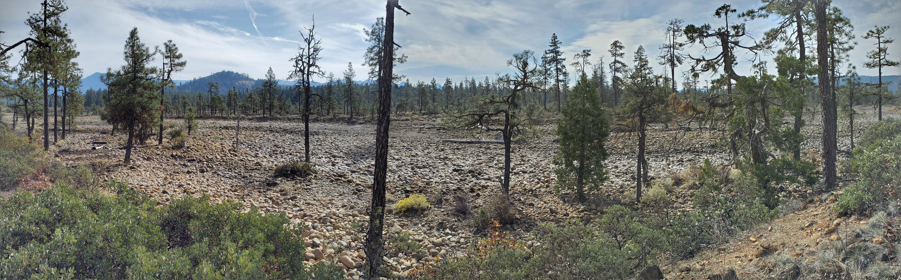 Panoramic view along the Rough and Ready Flat trail.