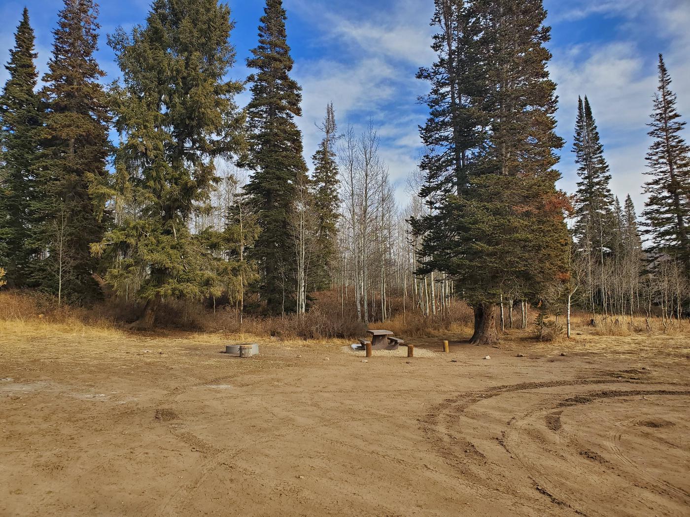 Lake Canyon Campground  Site 1