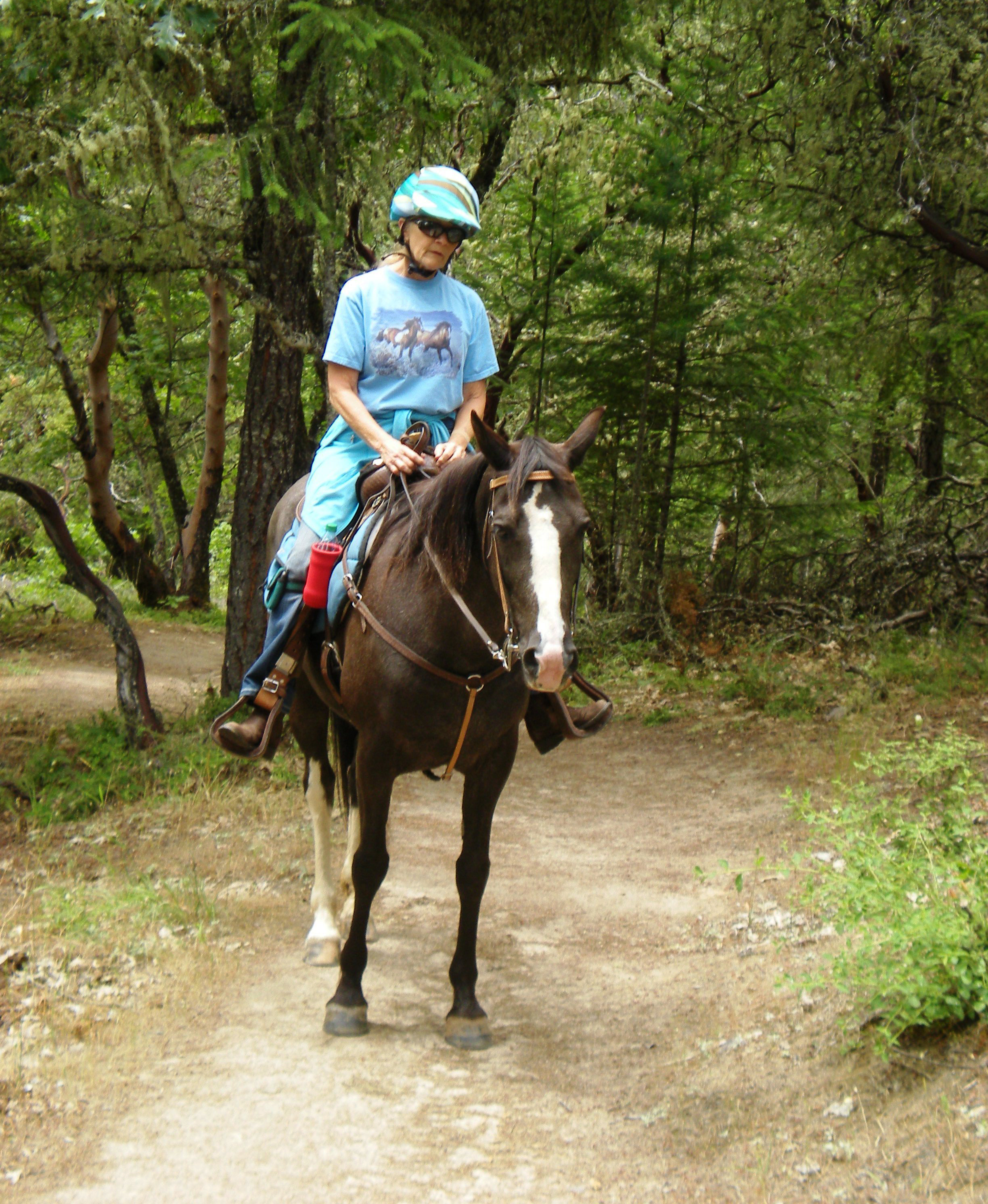 Horseback rider on the Cathedral Hills Trail System.