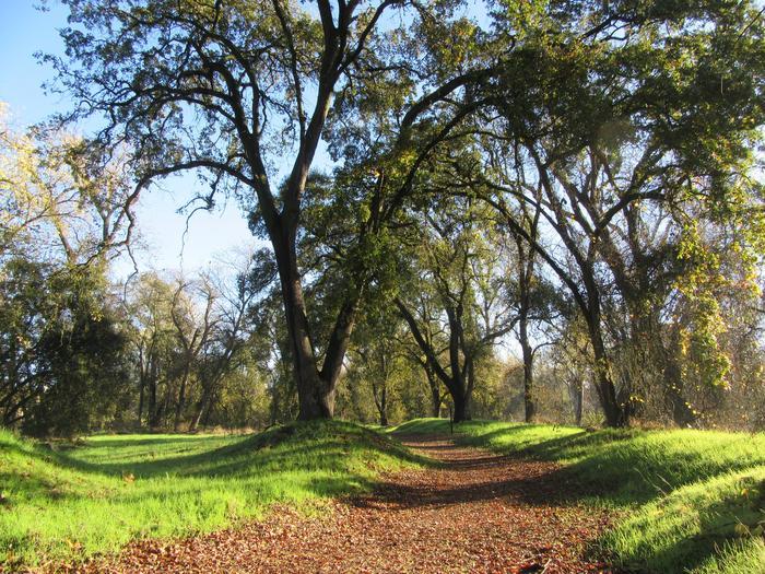 Valley Oak Recreation Area TrailWalking trail at Valley Oak Recreation Area