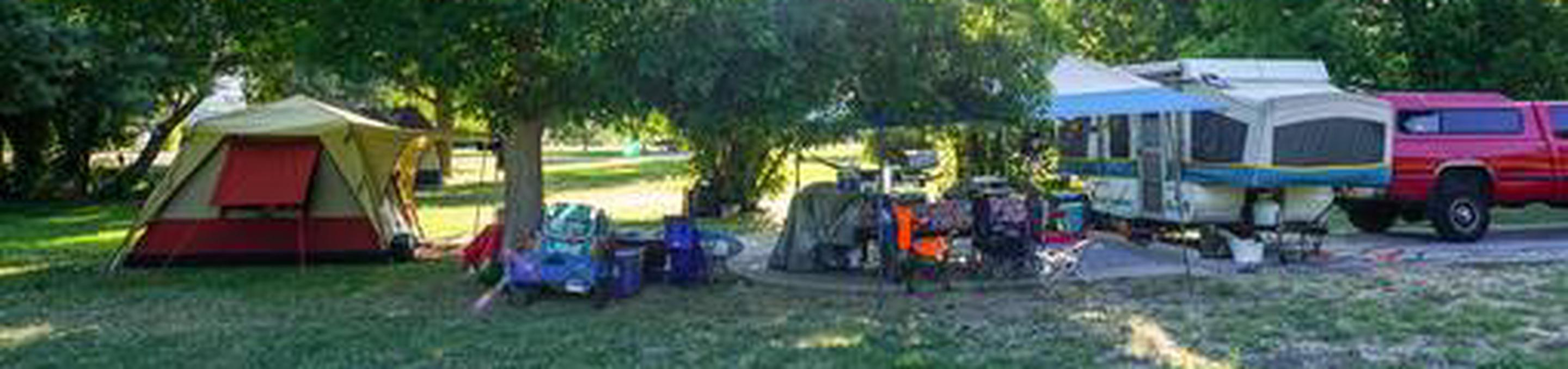 Anderson Cove Campground A-011