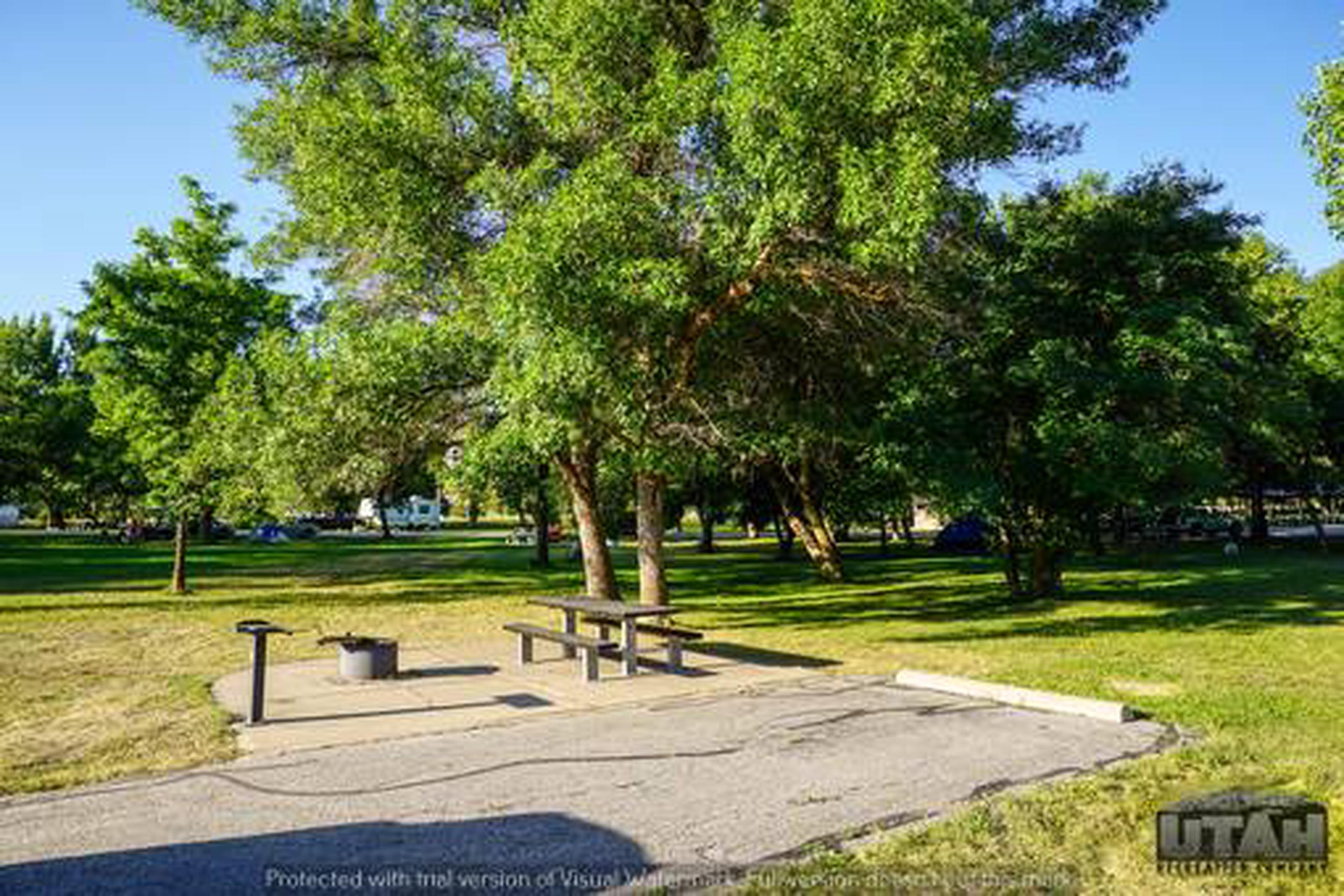 Anderson Cove Campground A-010