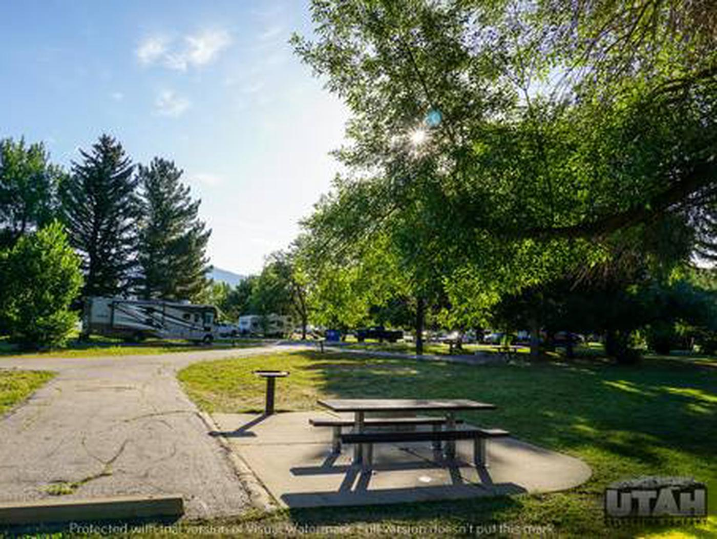 Anderson Cove Campground A-012