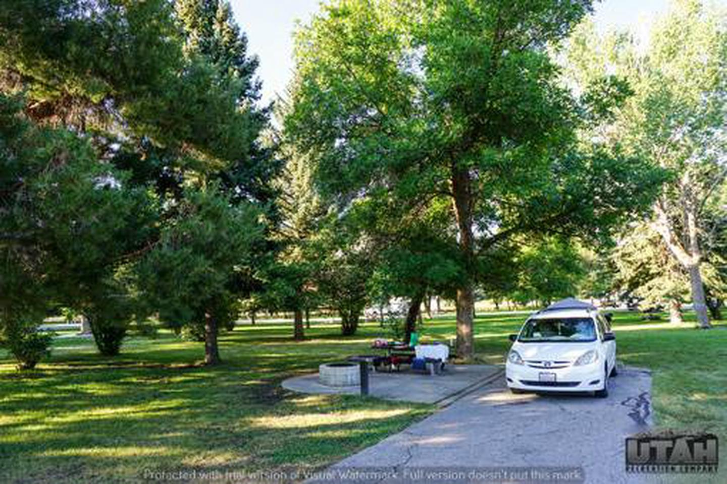 Anderson Cove Campground A-013