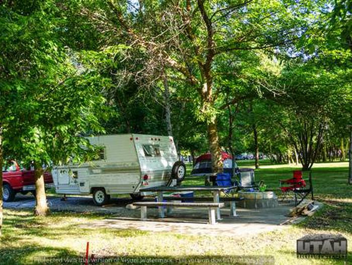 Anderson Cove Campground ROAD-022