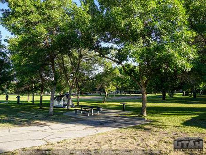 Anderson Cove Campground B-028