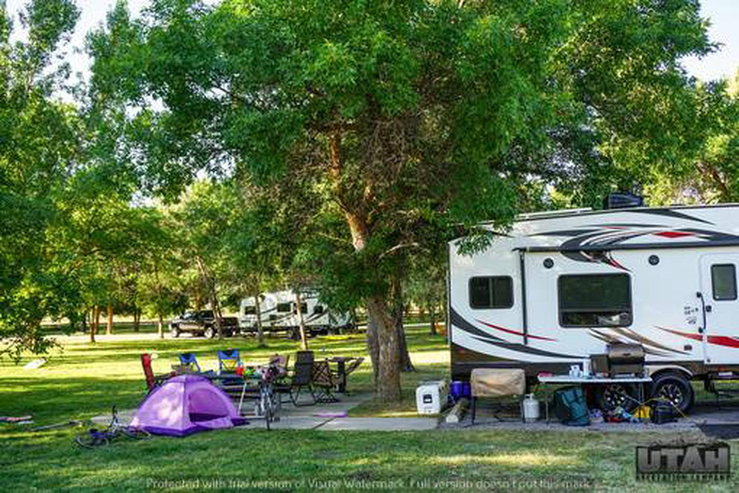 Anderson Cove Campground B-030