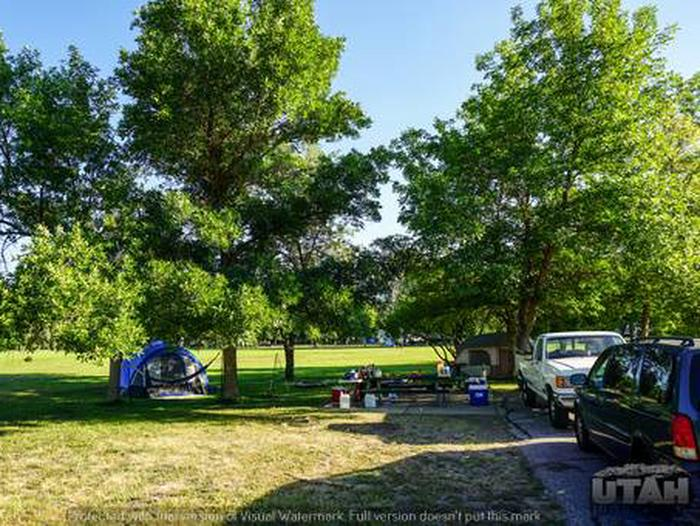 Anderson Cove Campground B-031