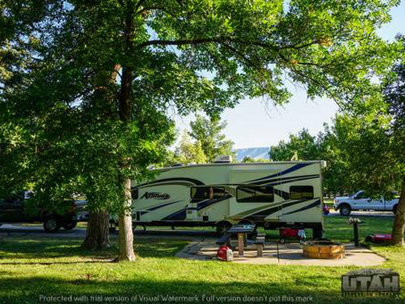 Anderson Cove Campground B-033