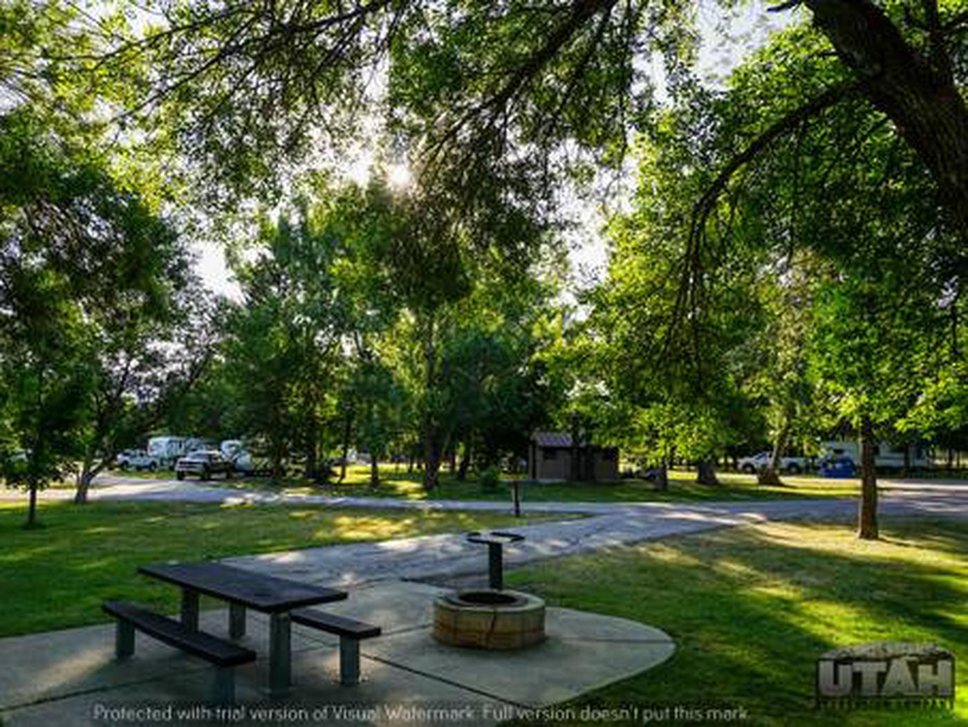 Anderson Cove Campground B-034