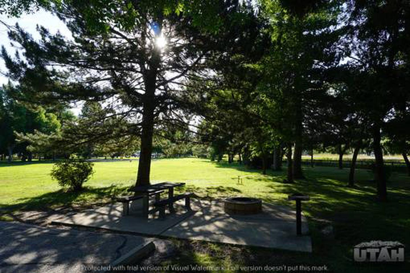 Anderson Cove Campground B-038