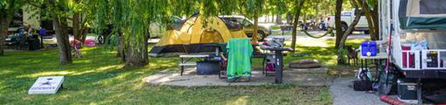 Anderson Cove Campground C-043