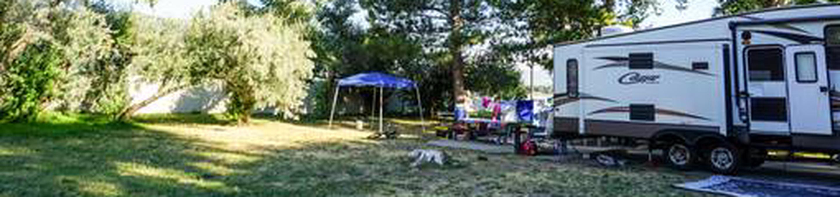Anderson Cove Campground C-046