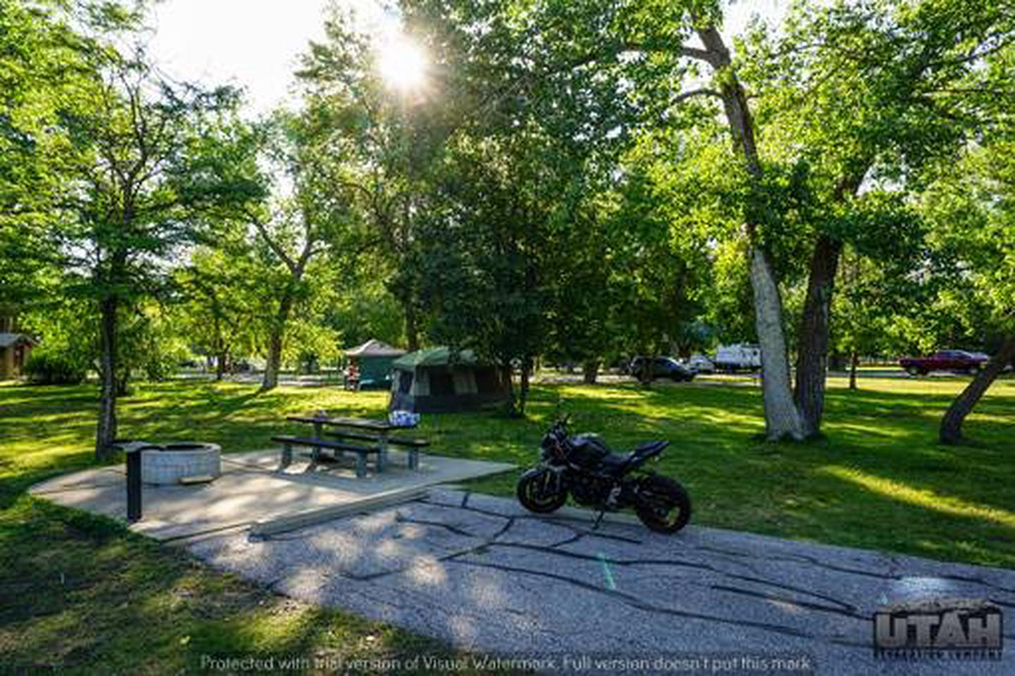 Anderson Cove Campground C-051
