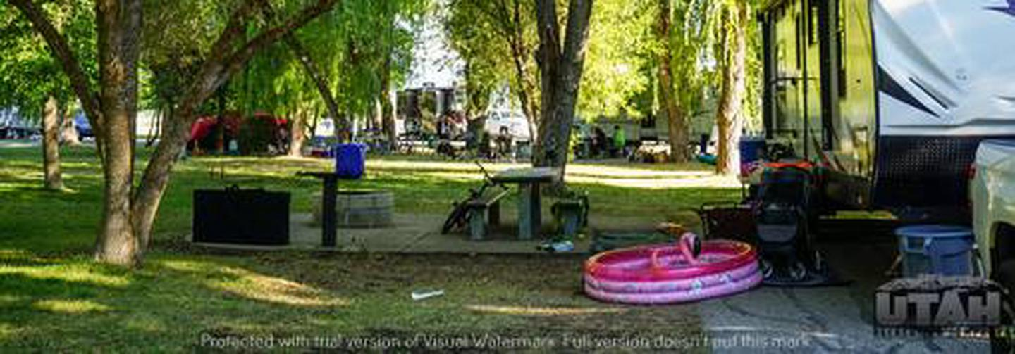 Anderson Cove Campground C-052