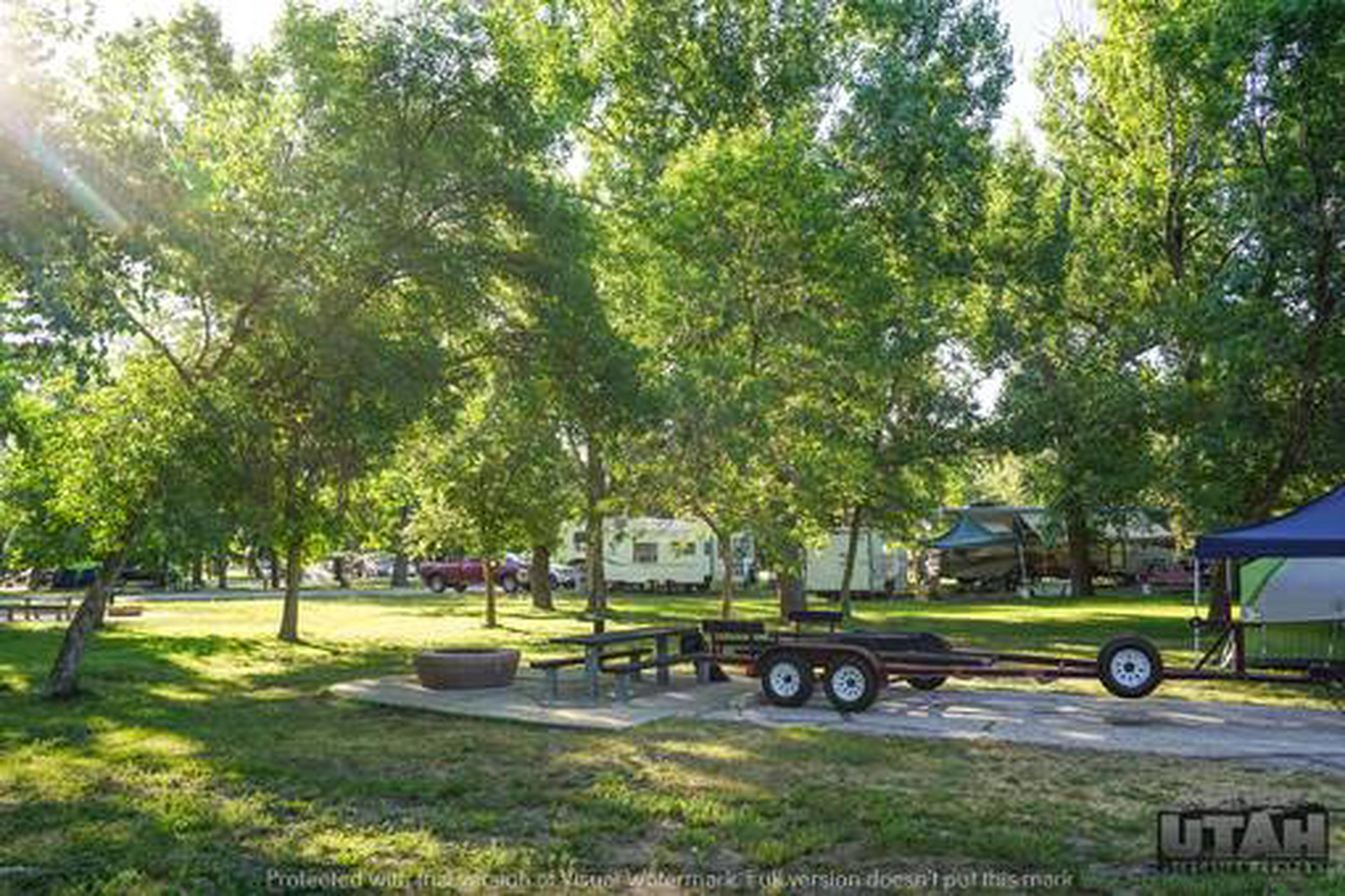 Anderson Cove Campground C-053