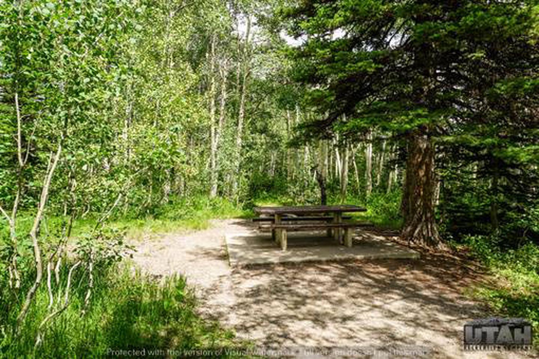 Monte Cristo Campground - MONT - 1
