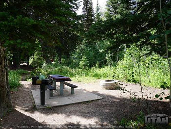 Monte Cristo Campground - MONT - 2