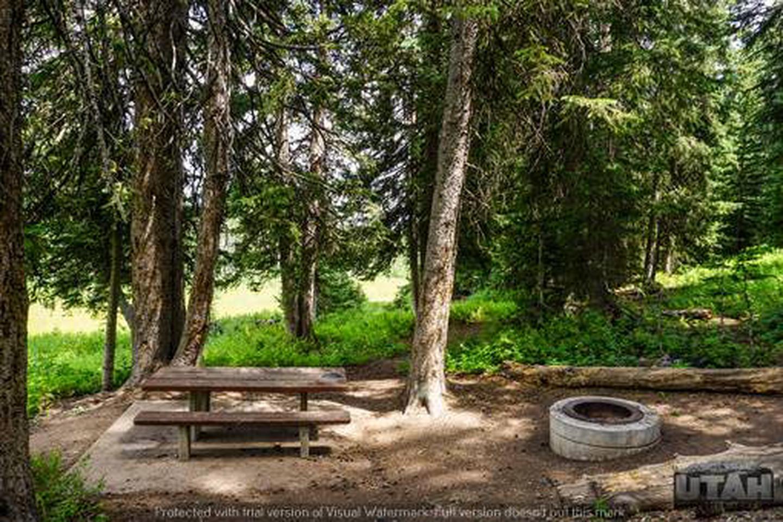 Monte Cristo Campground - MONT - 4