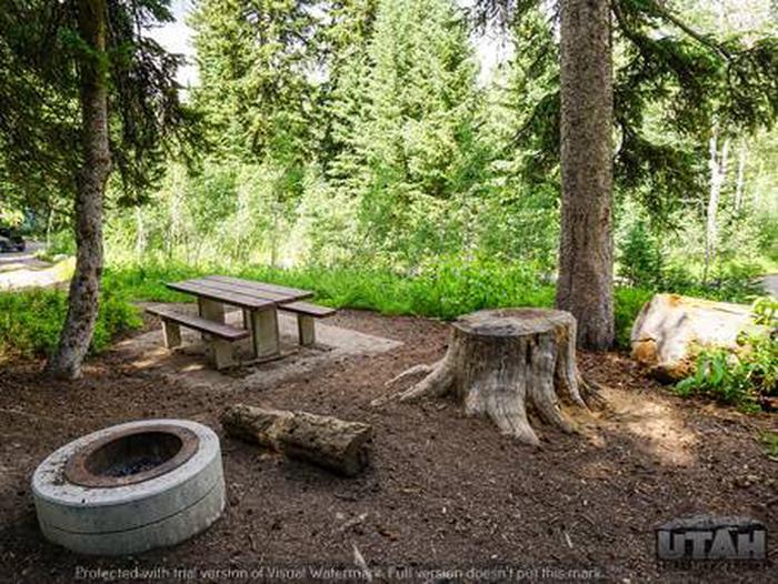 Monte Cristo Campground - MONT - 5