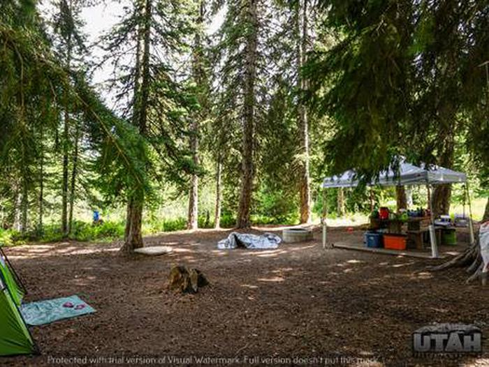 Monte Cristo Campground - MONT - 7