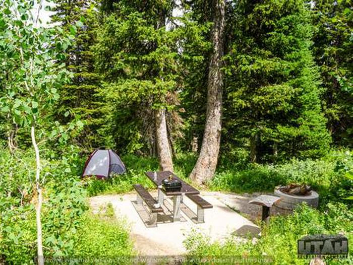 Monte Cristo Campground - MONT - 8