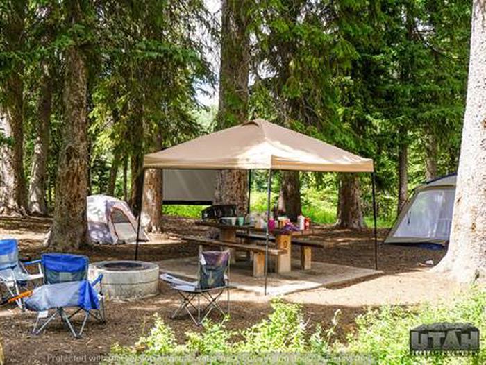 Monte Cristo Campground - MONT - 9