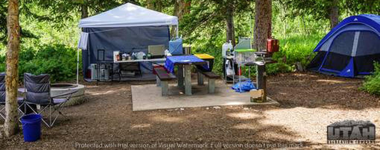 Monte Cristo Campground - MONT - 10