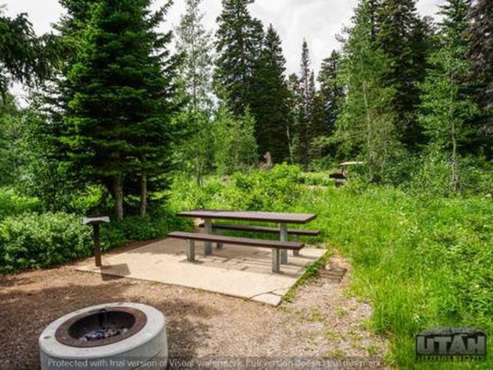 Monte Cristo Campground - MONT - 13
