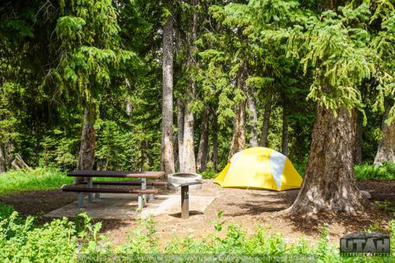 Monte Cristo Campground - MONT - 14