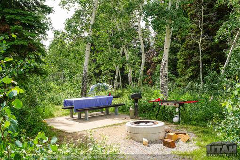 Monte Cristo Campground - MONT - 15