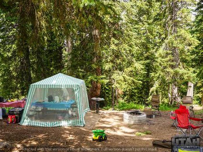 Monte Cristo Campground - MONT - 18