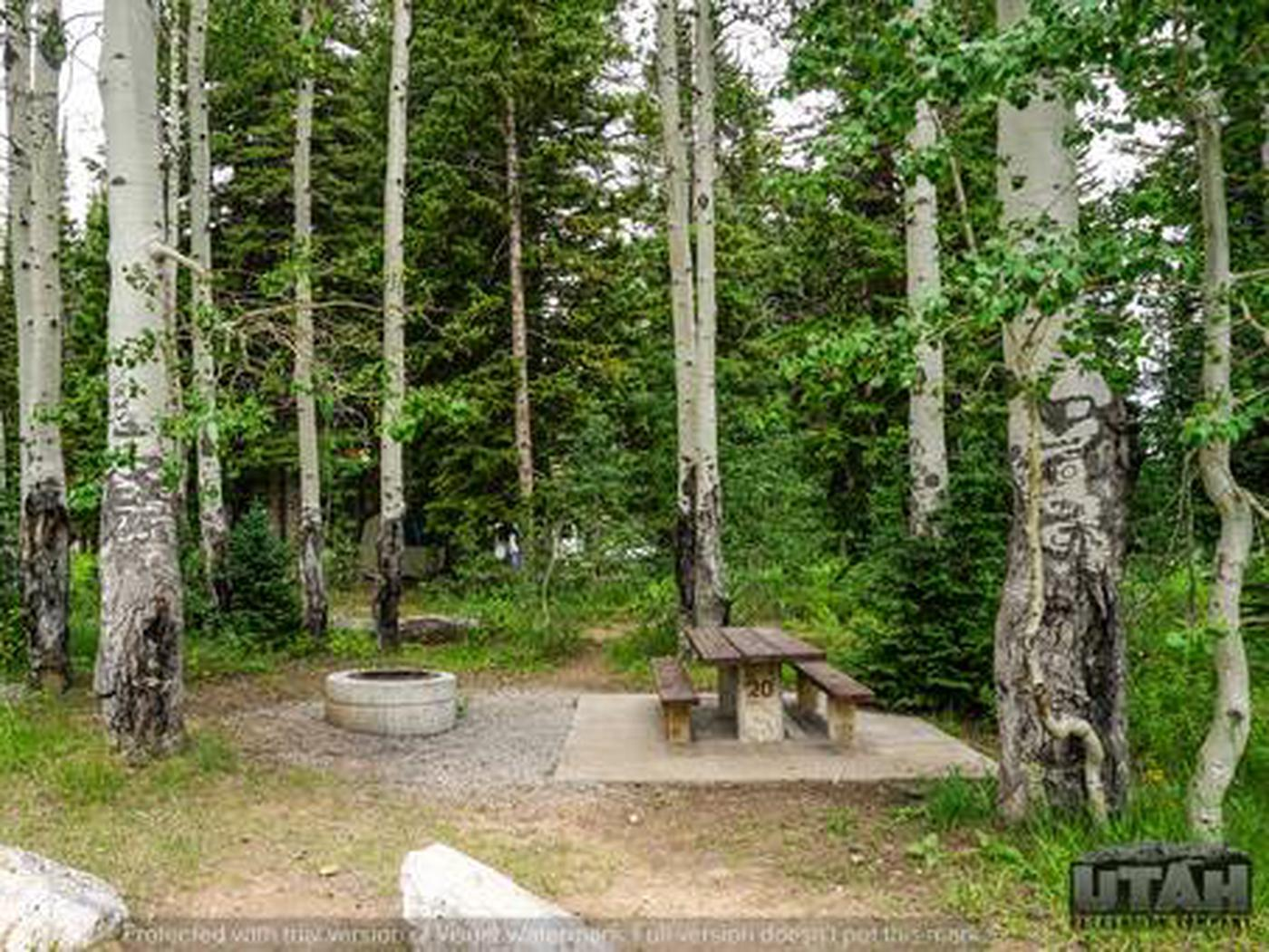 Monte Cristo Campground - MONT - 20
