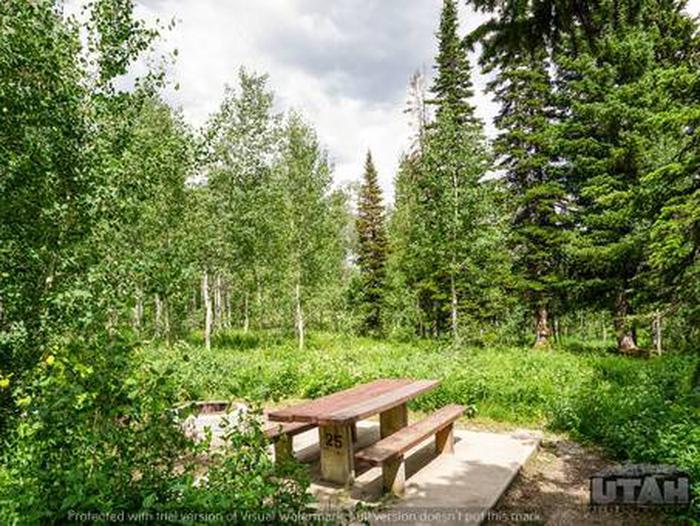 Monte Cristo Campground - MONT - 25